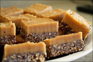 chocolate_peanut_butter_slice