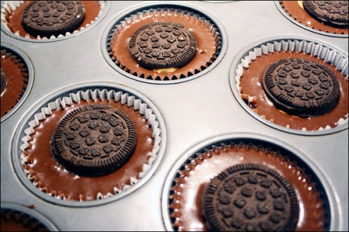 biscuits_in_cupcake